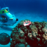sub_scooter_oahu_underwater